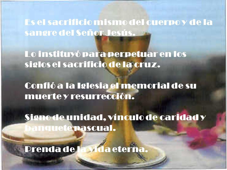 El sacrificio de la Cruz y el sacrificio de la Eucaristía son un único sacrificio.