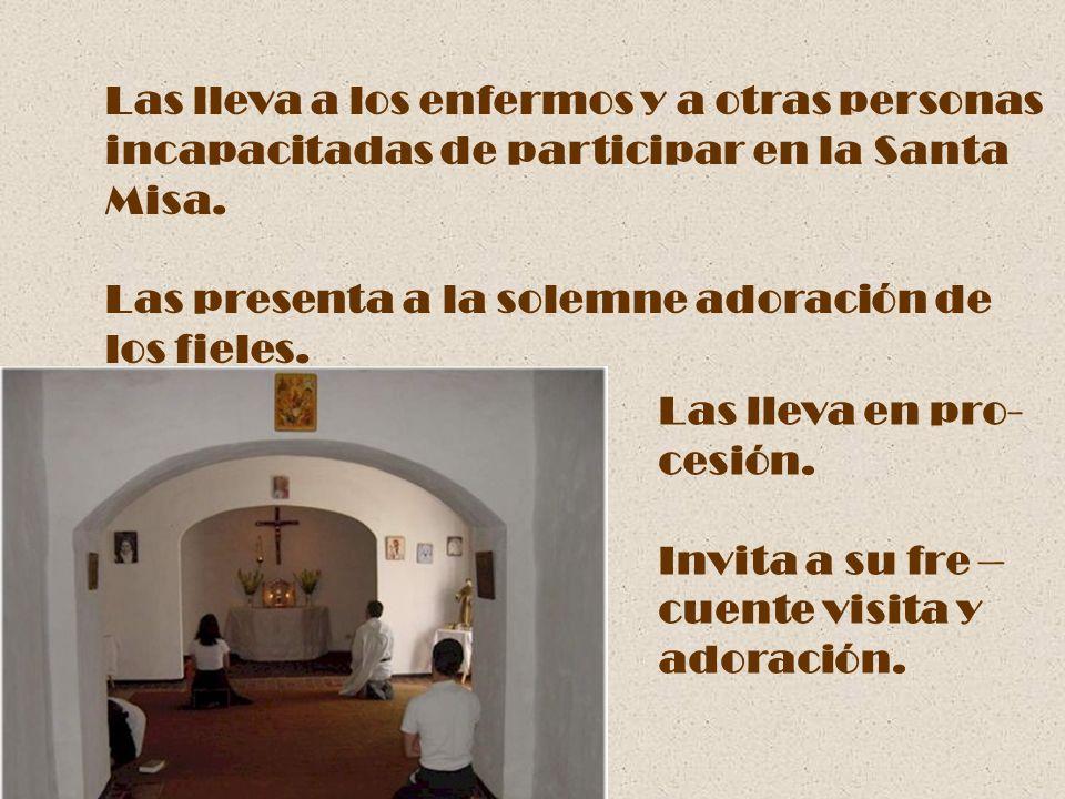 Las lleva a los enfermos y a otras personas incapacitadas de participar en la Santa Misa. Las presenta a la solemne adoración de los fieles. Las lleva