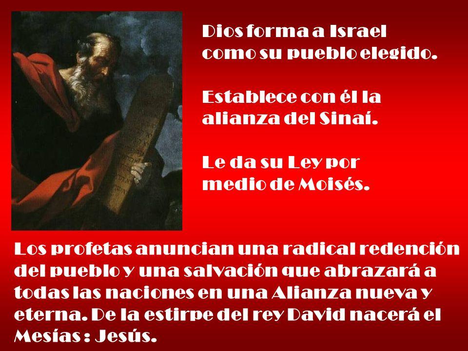 Dios forma a Israel como su pueblo elegido. Establece con él la alianza del Sinaí. Le da su Ley por medio de Moisés. Los profetas anuncian una radical