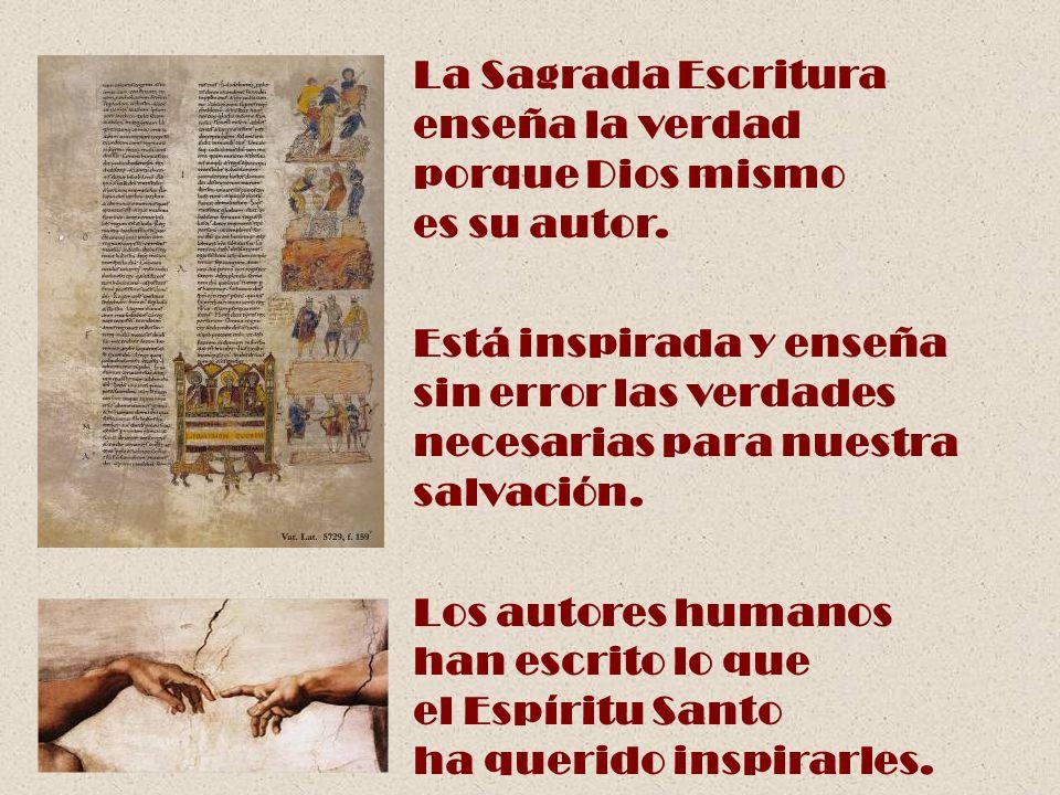 La Sagrada Escritura enseña la verdad porque Dios mismo es su autor. Está inspirada y enseña sin error las verdades necesarias para nuestra salvación.