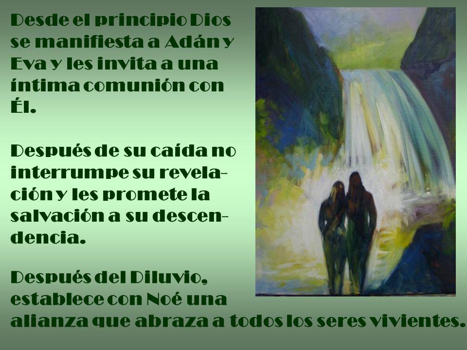 Desde el principio Dios se manifiesta a Adán y Eva y les invita a una íntima comunión con Él. Después de su caída no interrumpe su revela- ción y les