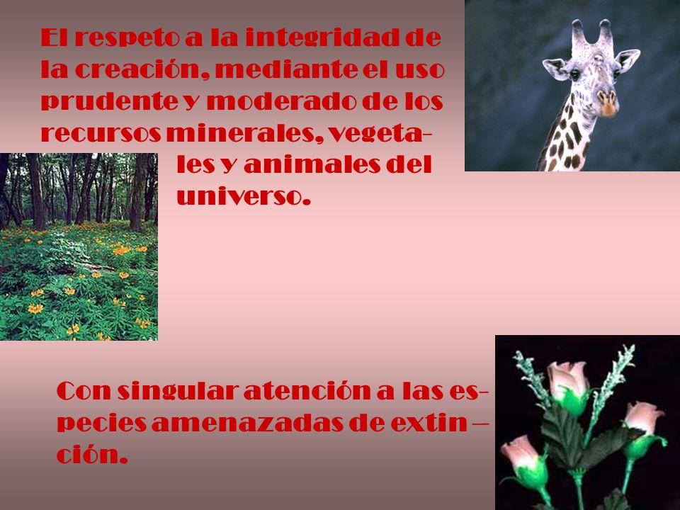 El respeto a la integridad de la creación, mediante el uso prudente y moderado de los recursos minerales, vegeta- les y animales del universo. Con sin