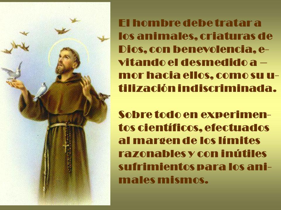 El hombre debe tratar a los animales, criaturas de Dios, con benevolencia, e- vitando el desmedido a – mor hacia ellos, como su u- tilización indiscri