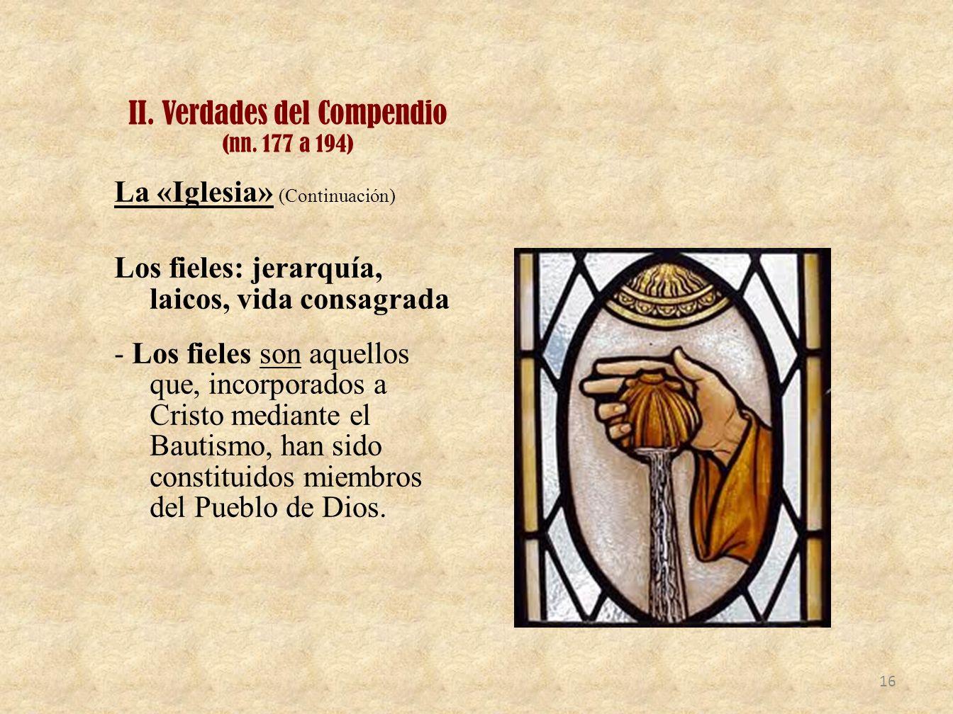 II. Verdades del Compendio (nn. 177 a 194) La «Iglesia» (Continuación) Los fieles: jerarquía, laicos, vida consagrada - Los fieles son aquellos que, i