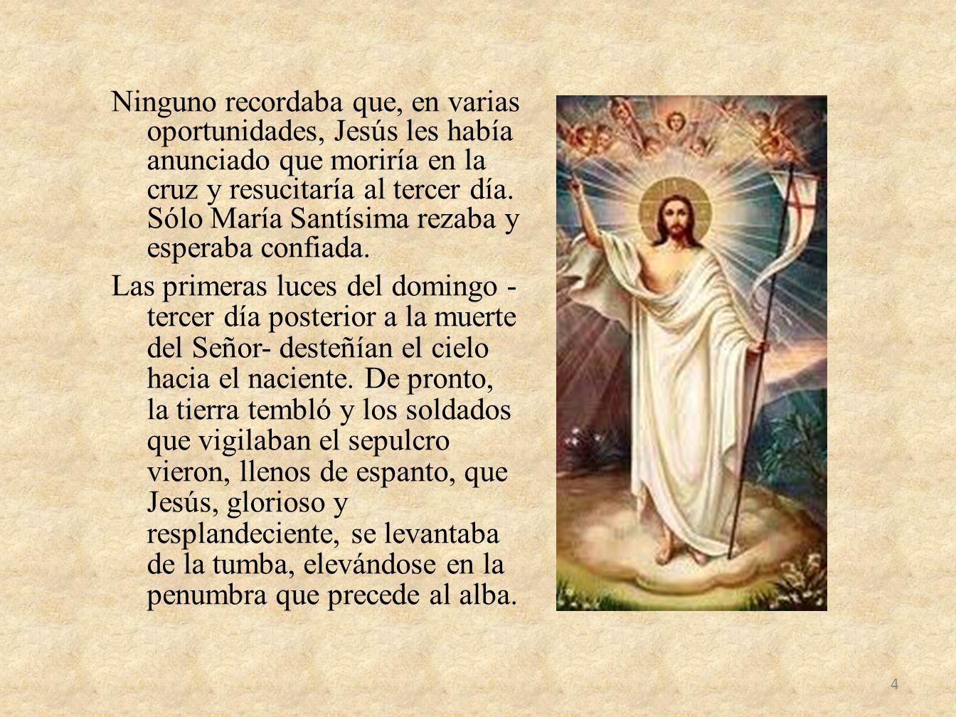 Ninguno recordaba que, en varias oportunidades, Jesús les había anunciado que moriría en la cruz y resucitaría al tercer día. Sólo María Santísima rez
