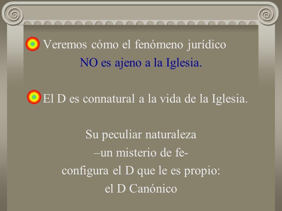 Veremos cómo el fenómeno jurídico NO es ajeno a la Iglesia. El D es connatural a la vida de la Iglesia. Su peculiar naturaleza –un misterio de fe- con