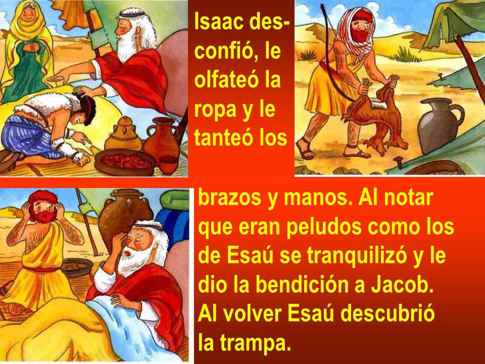 brazos y manos. Al notar que eran peludos como los de Esaú se tranquilizó y le dio la bendición a Jacob. Al volver Esaú descubrió la trampa. Isaac des