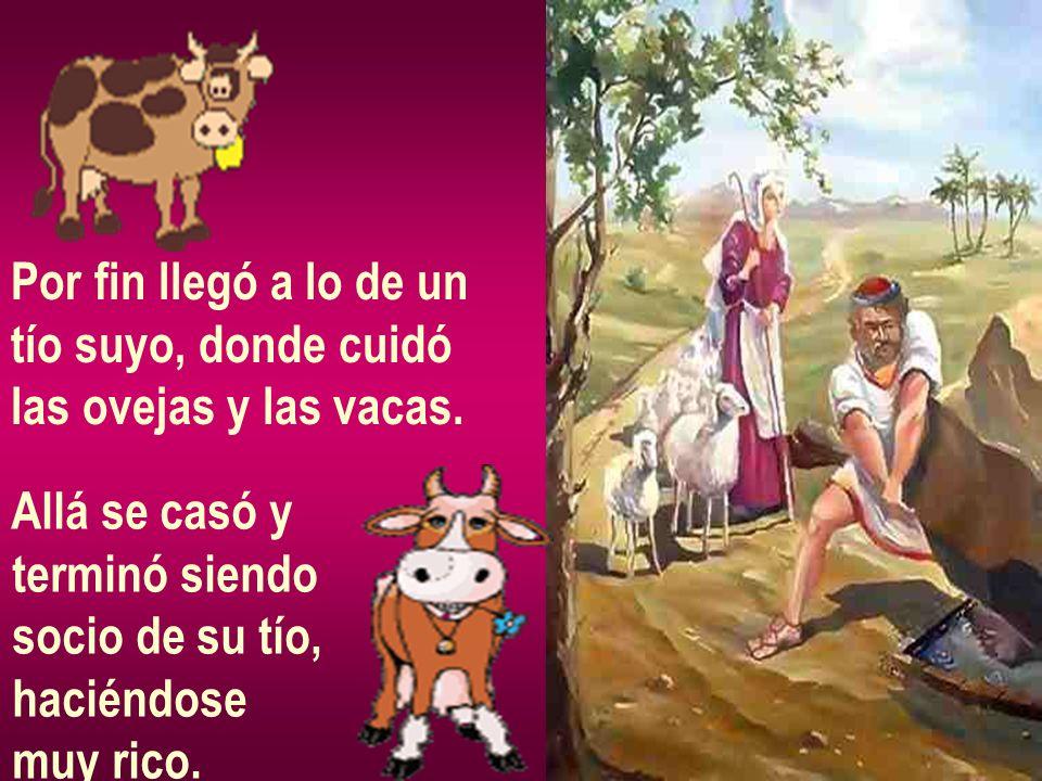 Por fin llegó a lo de un tío suyo, donde cuidó las ovejas y las vacas. Allá se casó y terminó siendo socio de su tío, haciéndose muy rico.