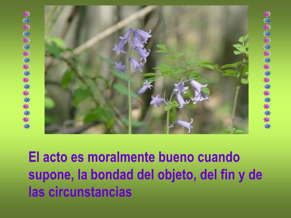 El acto es moralmente bueno cuando supone, la bondad del objeto, del fin y de las circunstancias