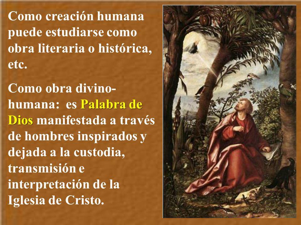 Como creación humana puede estudiarse como obra literaria o histórica, etc.