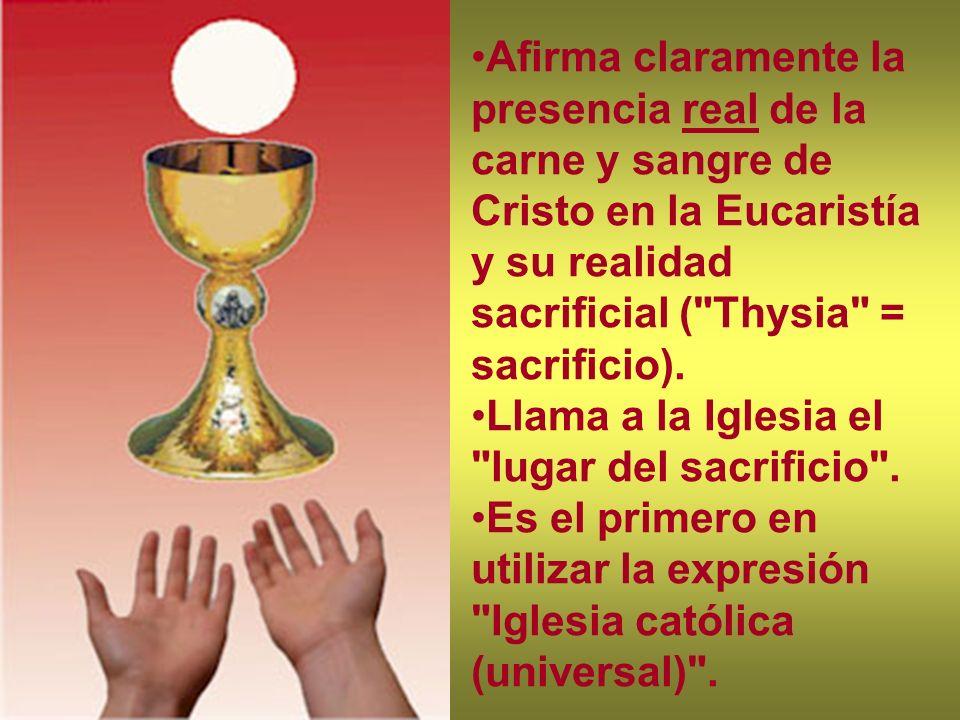 Afirma claramente la presencia real de la carne y sangre de Cristo en la Eucaristía y su realidad sacrificial (