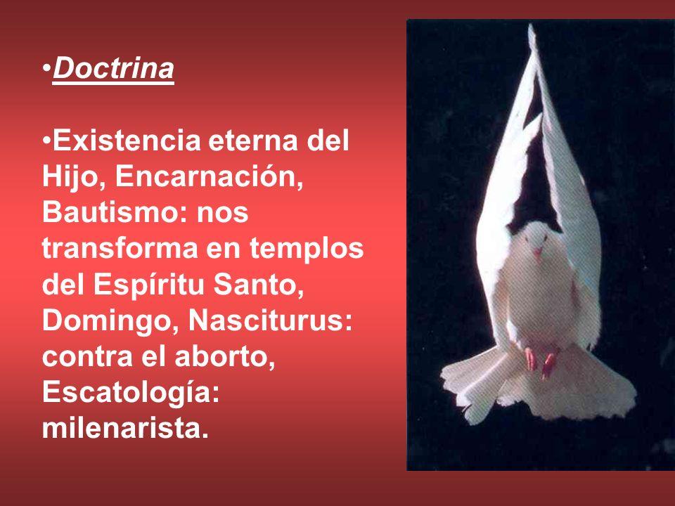 Doctrina Existencia eterna del Hijo, Encarnación, Bautismo: nos transforma en templos del Espíritu Santo, Domingo, Nasciturus: contra el aborto, Escat