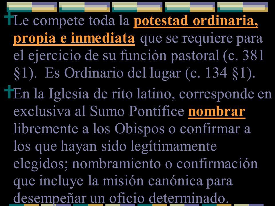 Le compete toda la potestad ordinaria, propia e inmediata que se requiere para el ejercicio de su función pastoral (c. 381 §1). Es Ordinario del lugar