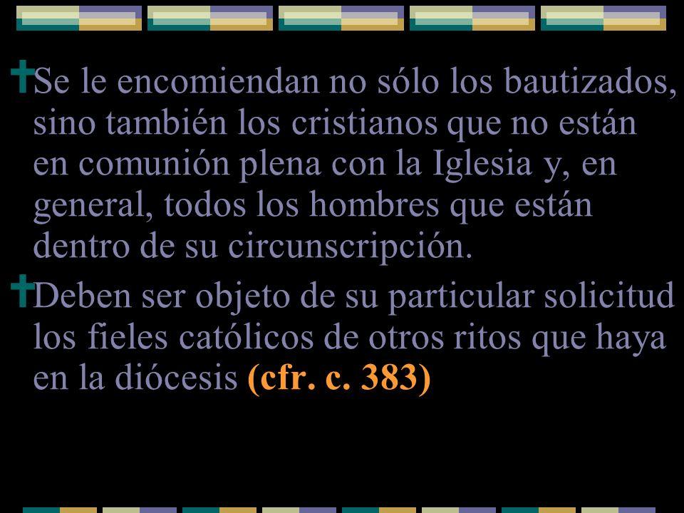 Se le encomiendan no sólo los bautizados, sino también los cristianos que no están en comunión plena con la Iglesia y, en general, todos los hombres q