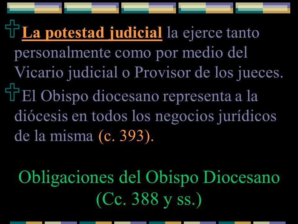 La potestad judicial la ejerce tanto personalmente como por medio del Vicario judicial o Provisor de los jueces. El Obispo diocesano representa a la d