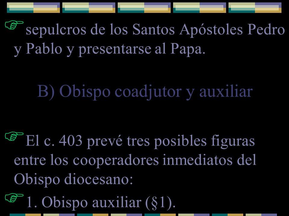 sepulcros de los Santos Apóstoles Pedro y Pablo y presentarse al Papa. El c. 403 prevé tres posibles figuras entre los cooperadores inmediatos del Obi