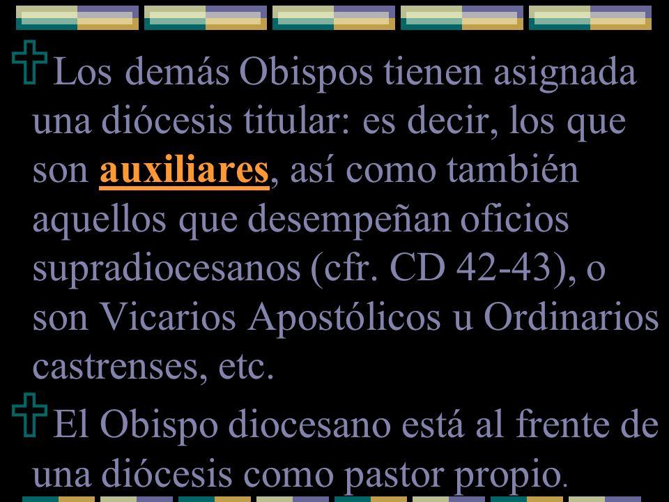 Le compete toda la potestad ordinaria, propia e inmediata que se requiere para el ejercicio de su función pastoral (c.