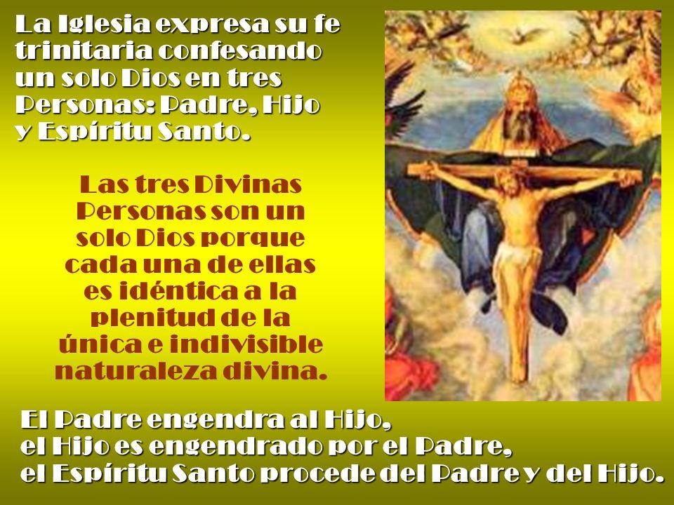 La Iglesia expresa su fe trinitaria confesando un solo Dios en tres Personas: Padre, Hijo y Espíritu Santo. Las tres Divinas Personas son un solo Dios