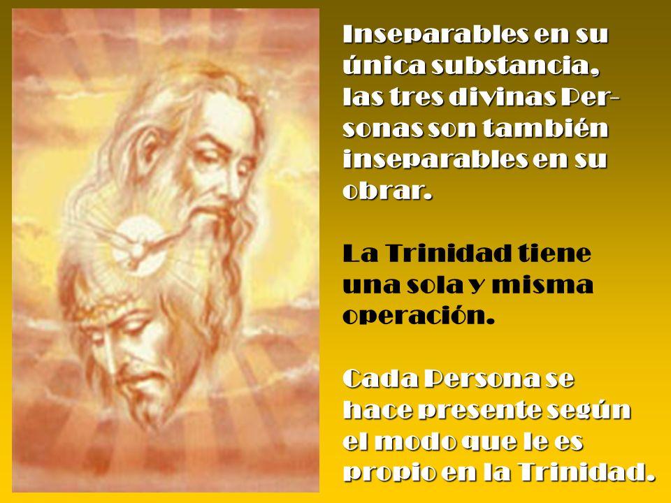Inseparables en su única substancia, las tres divinas Per- sonas son también inseparables en su obrar. La Trinidad tiene una sola y misma operación. C