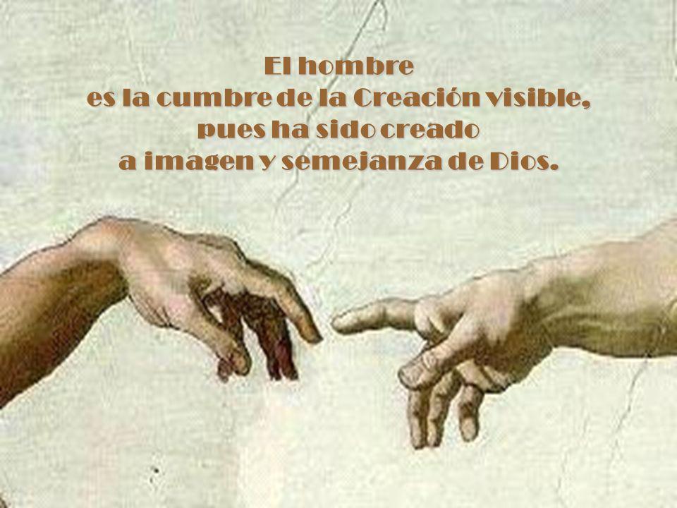 El hombre es la cumbre de la Creación visible, pues ha sido creado a imagen y semejanza de Dios.