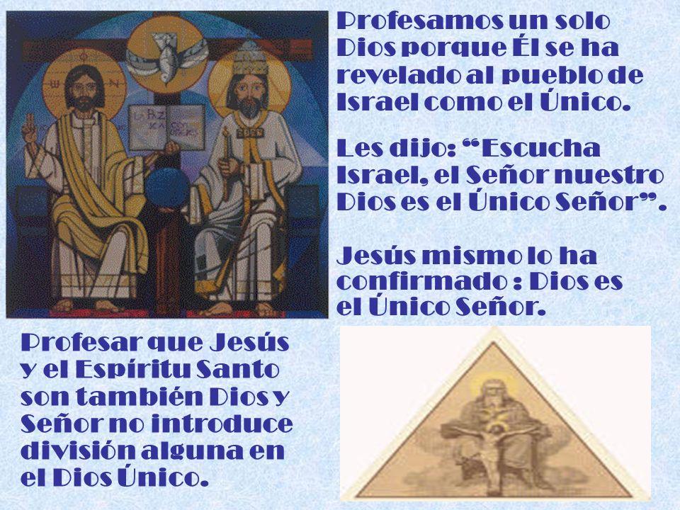 Profesamos un solo Dios porque Él se ha revelado al pueblo de Israel como el Único. Les dijo: Escucha Israel, el Señor nuestro Dios es el Único Señor.