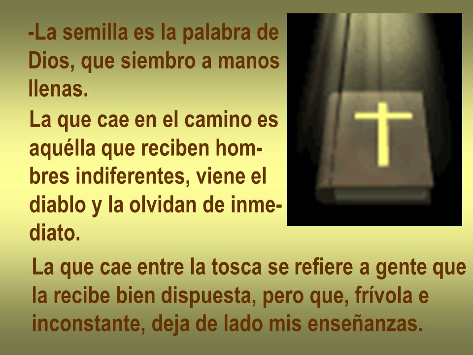 -La semilla es la palabra de Dios, que siembro a manos llenas. La que cae en el camino es aquélla que reciben hom- bres indiferentes, viene el diablo