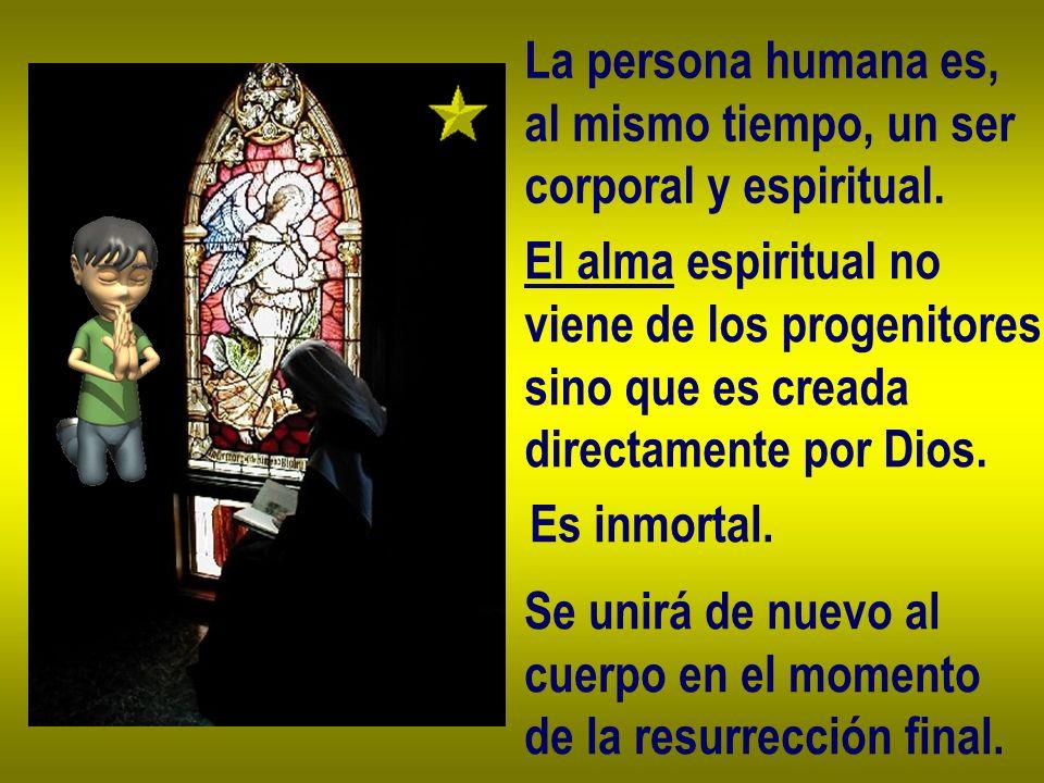 La persona humana es, al mismo tiempo, un ser corporal y espiritual. El alma espiritual no viene de los progenitores, sino que es creada directamente