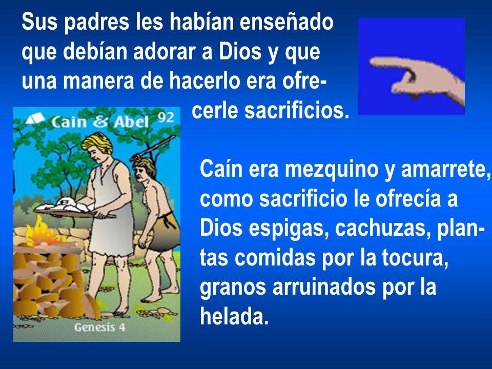 Sus padres les habían enseñado que debían adorar a Dios y que una manera de hacerlo era ofre- cerle sacrificios. Caín era mezquino y amarrete, como sa