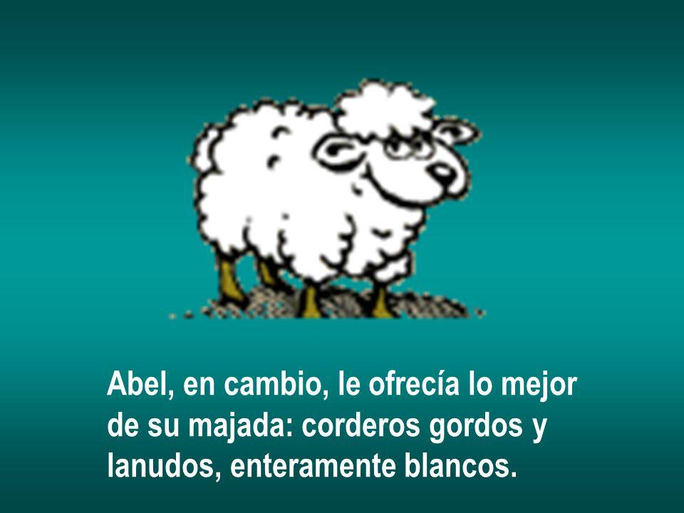 Abel, en cambio, le ofrecía lo mejor de su majada: corderos gordos y lanudos, enteramente blancos.