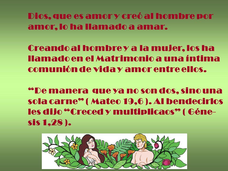 Dios, que es amor y creó al hombre por amor, lo ha llamado a amar. Creando al hombre y a la mujer, los ha llamado en el Matrimonio a una íntima comuni