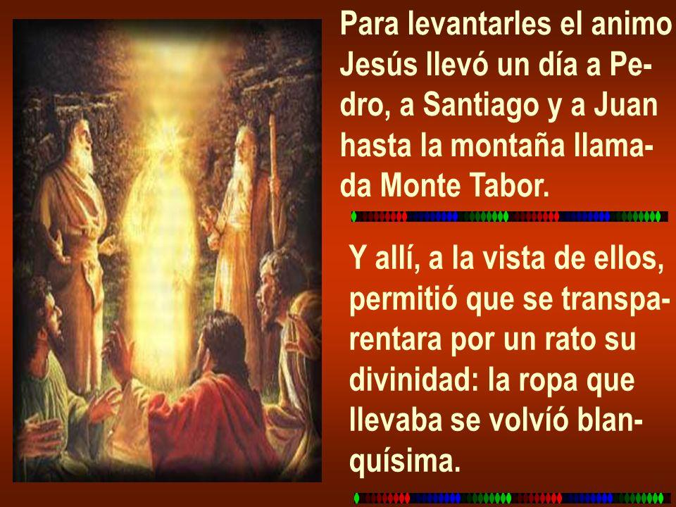 Para levantarles el animo Jesús llevó un día a Pe- dro, a Santiago y a Juan hasta la montaña llama- da Monte Tabor. Y allí, a la vista de ellos, permi