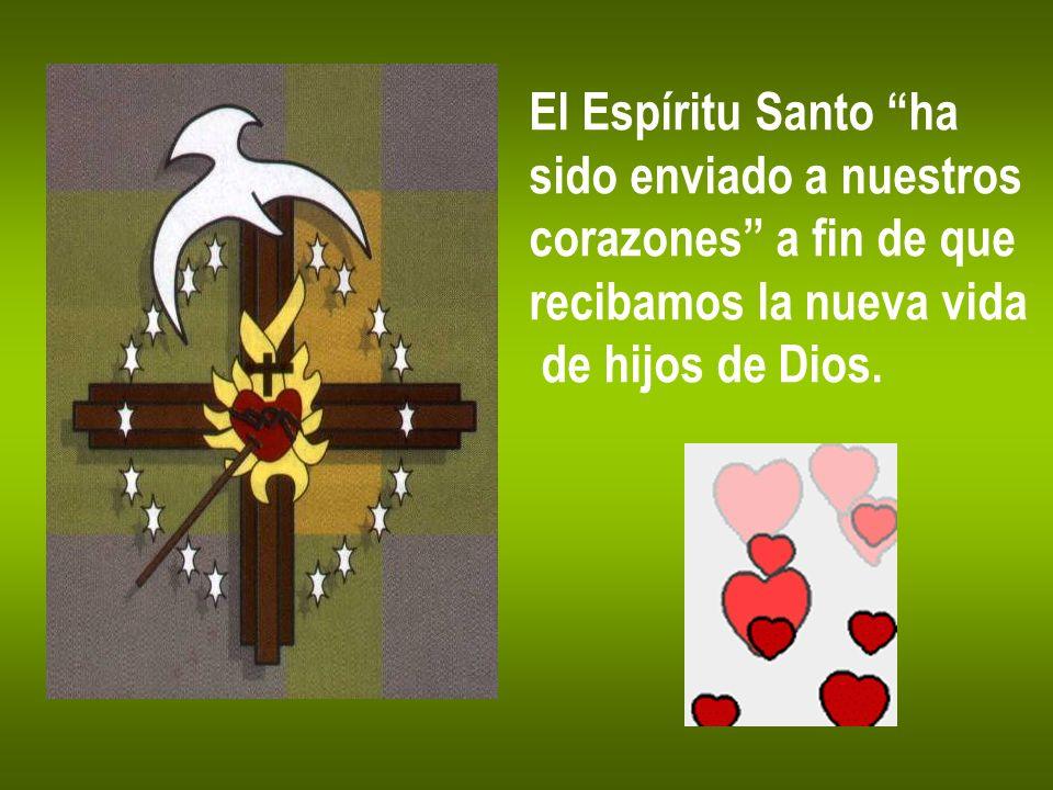El Espíritu Santo ha sido enviado a nuestros corazones a fin de que recibamos la nueva vida de hijos de Dios.