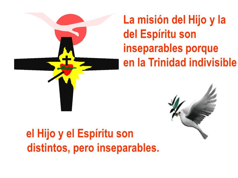 La misión del Hijo y la del Espíritu son inseparables porque en la Trinidad indivisible el Hijo y el Espíritu son distintos, pero inseparables.