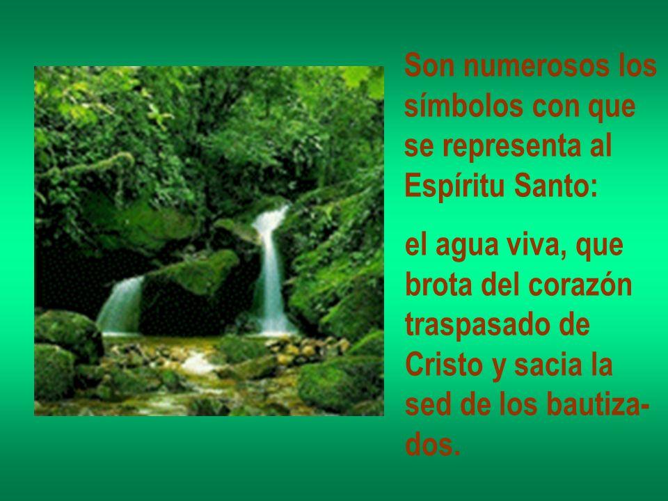 Son numerosos los símbolos con que se representa al Espíritu Santo: el agua viva, que brota del corazón traspasado de Cristo y sacia la sed de los bau