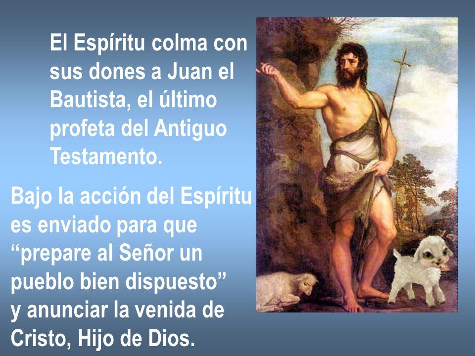 El Espíritu colma con sus dones a Juan el Bautista, el último profeta del Antiguo Testamento. Bajo la acción del Espíritu es enviado para que prepare
