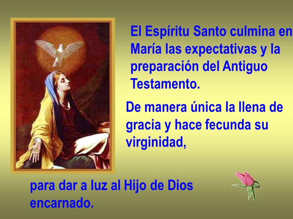 El Espíritu Santo culmina en María las expectativas y la preparación del Antiguo Testamento. De manera única la llena de gracia y hace fecunda su virg