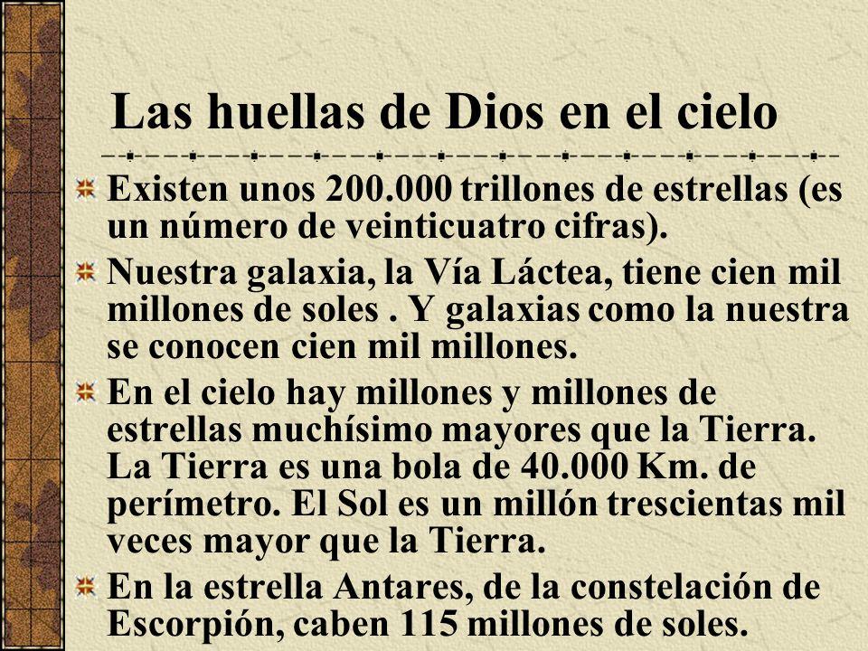 Alfa de Hércules, que está a 1.200 años-luz, y es la mayor de todas las estrellas conocidas, es ocho mil billones de veces mayor que el Sol.
