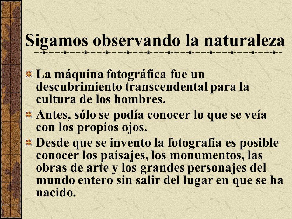 Sigamos observando la naturaleza La máquina fotográfica fue un descubrimiento transcendental para la cultura de los hombres. Antes, sólo se podía cono
