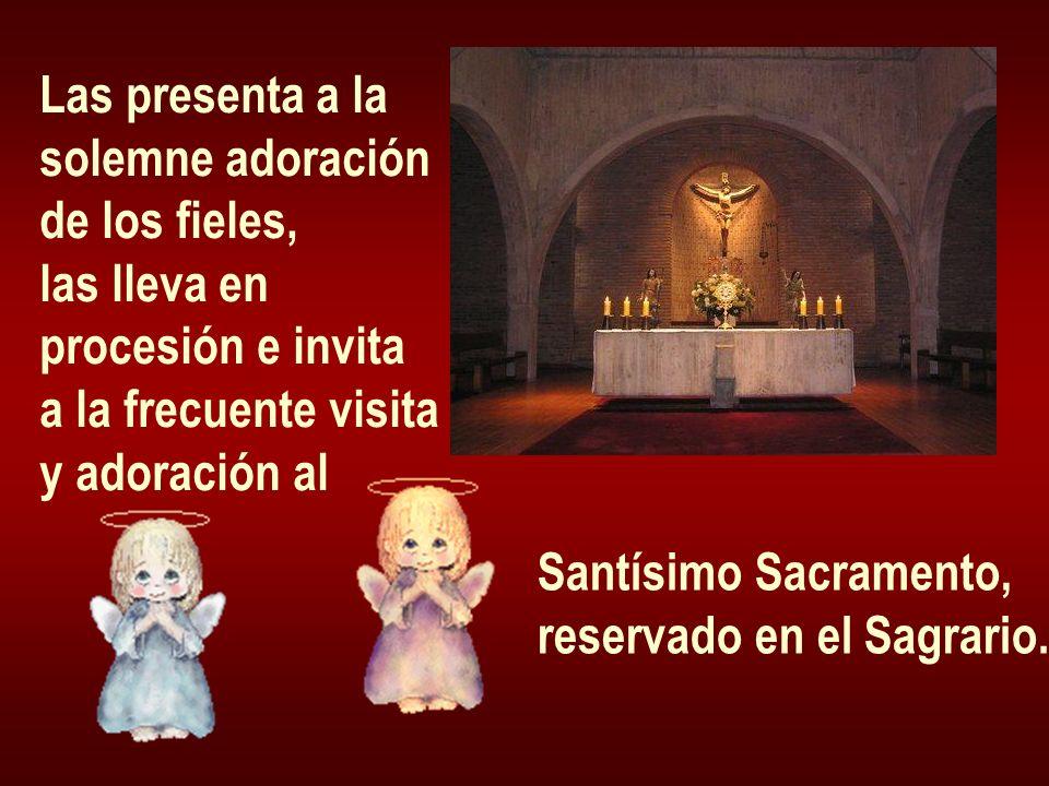 Las presenta a la solemne adoración de los fieles, las lleva en procesión e invita a la frecuente visita y adoración al Santísimo Sacramento, reservad