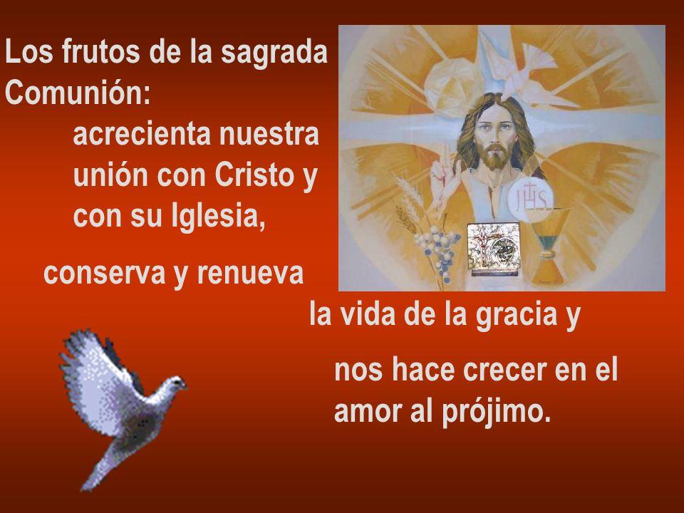 Los frutos de la sagrada Comunión: acrecienta nuestra unión con Cristo y con su Iglesia, conserva y renueva la vida de la gracia y nos hace crecer en