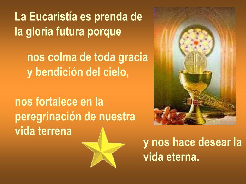 La Eucaristía es prenda de la gloria futura porque nos colma de toda gracia y bendición del cielo, nos fortalece en la peregrinación de nuestra vida t