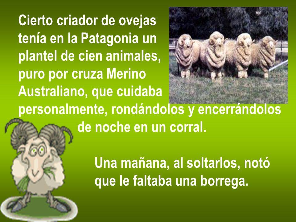Cierto criador de ovejas tenía en la Patagonia un plantel de cien animales, puro por cruza Merino Australiano, que cuidaba personalmente, rondándolos y encerrándolos de noche en un corral.