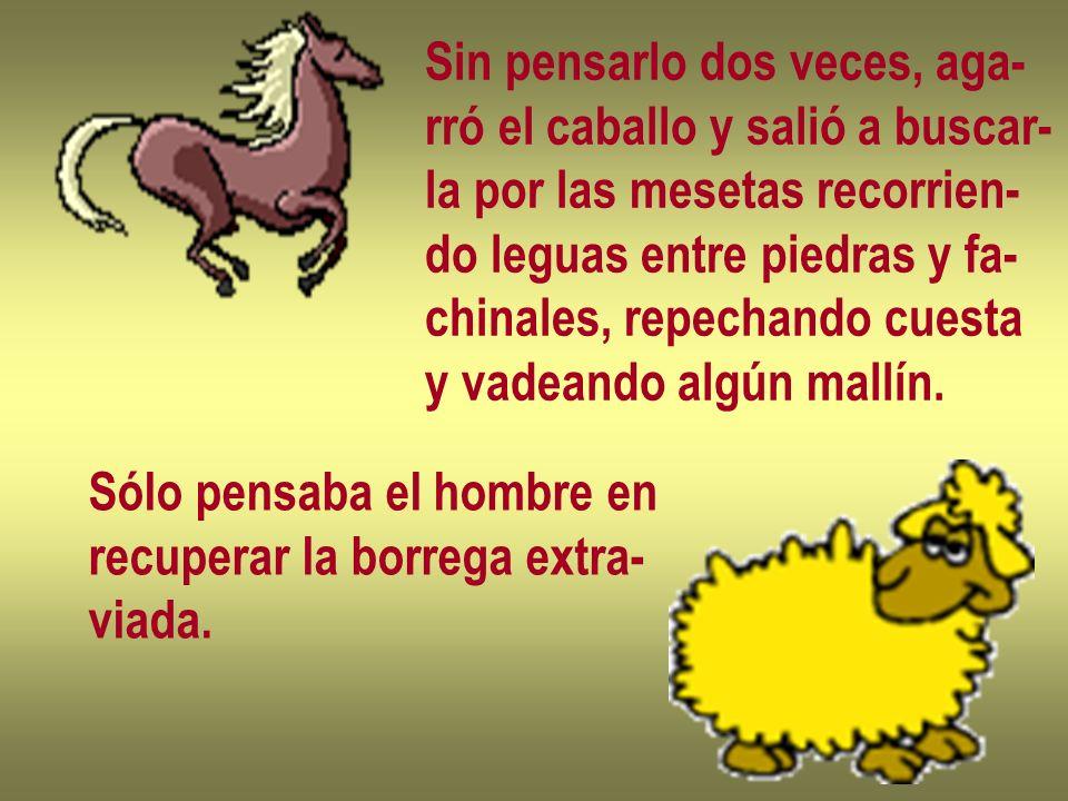 Sin pensarlo dos veces, aga- rró el caballo y salió a buscar- la por las mesetas recorrien- do leguas entre piedras y fa- chinales, repechando cuesta y vadeando algún mallín.