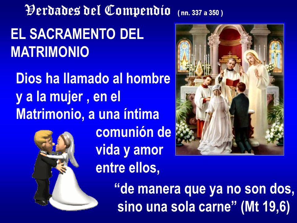 Verdades del Compendio ( nn. 337 a 350 ) EL SACRAMENTO DEL MATRIMONIO Dios ha llamado al hombre y a la mujer, en el Matrimonio, a una íntima comunión