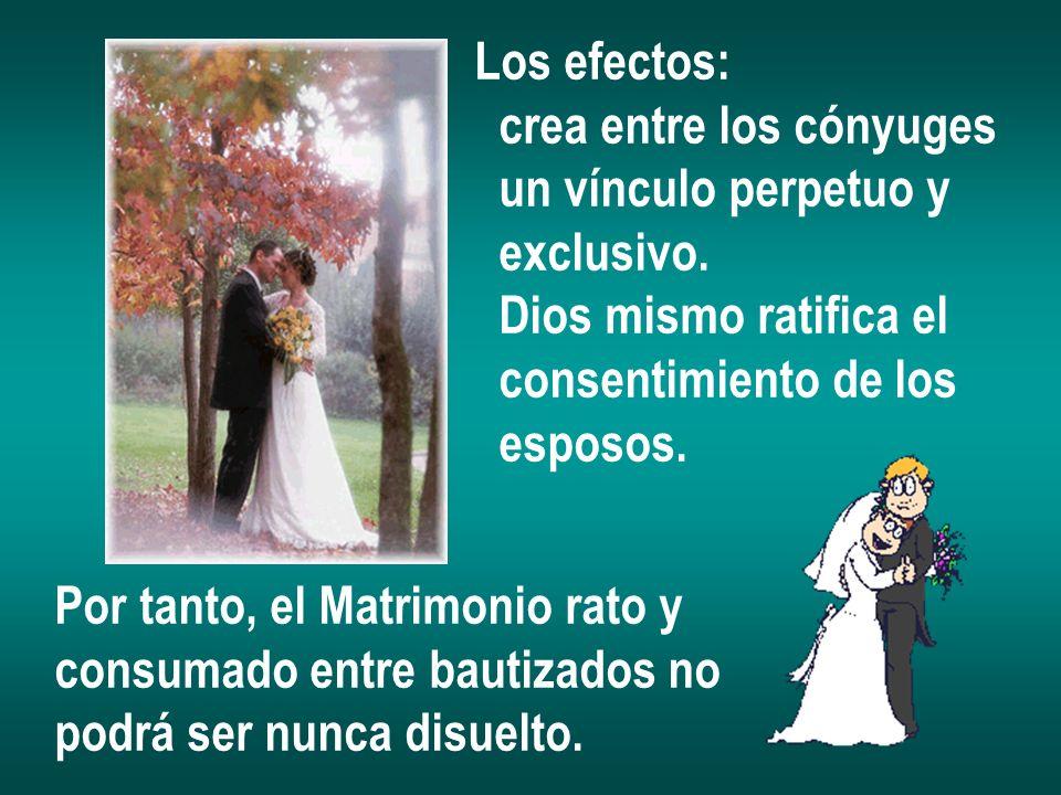 Los efectos: crea entre los cónyuges un vínculo perpetuo y exclusivo. Dios mismo ratifica el consentimiento de los esposos. Por tanto, el Matrimonio r