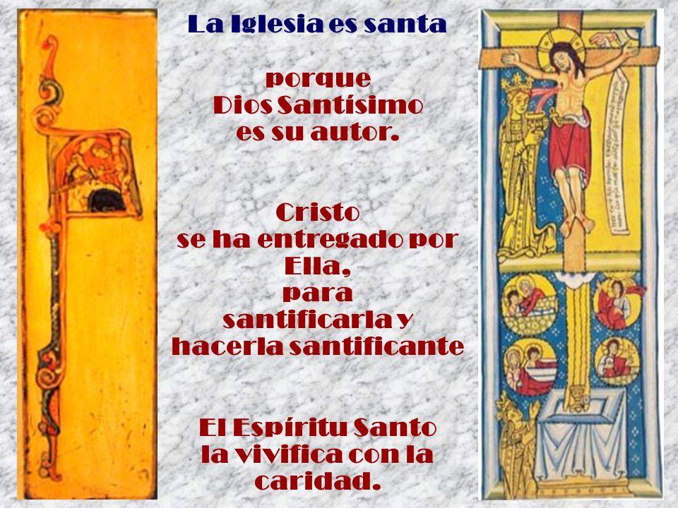 La Iglesia es santa porque Dios Santísimo es su autor. Cristo se ha entregado por Ella, para santificarla y hacerla santificante El Espíritu Santo la