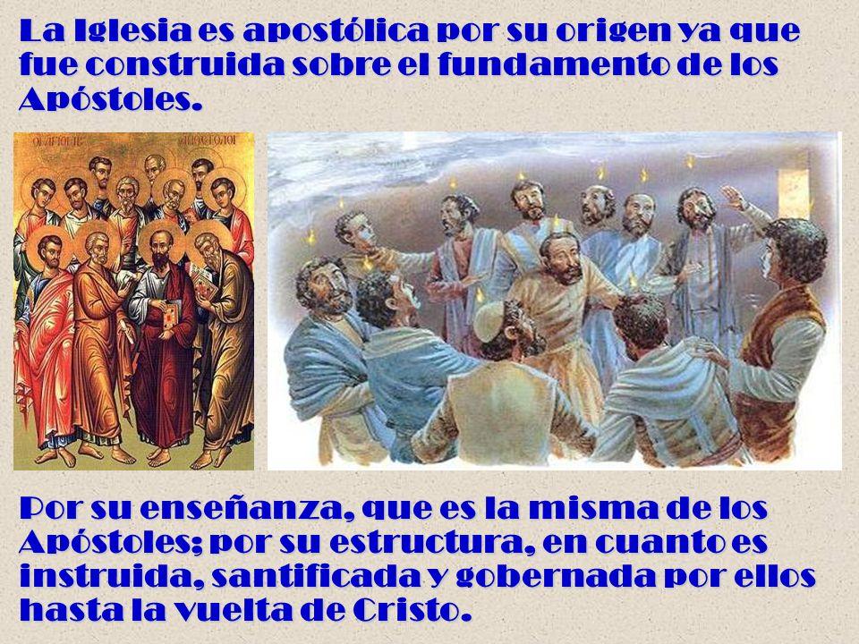 La Iglesia es apostólica por su origen ya que fue construida sobre el fundamento de los Apóstoles. Por su enseñanza, que es la misma de los Apóstoles;