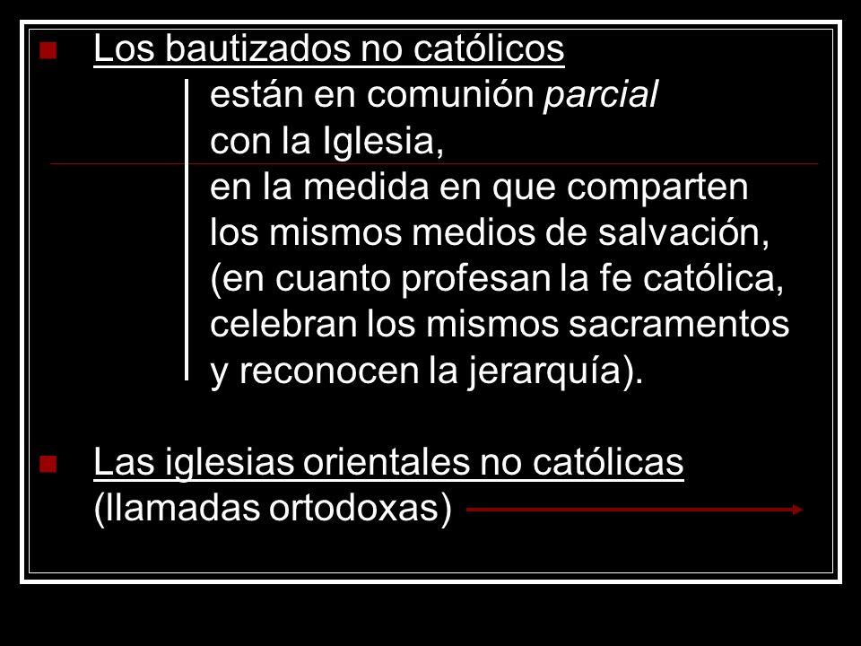 Los bautizados no católicos están en comunión parcial con la Iglesia, en la medida en que comparten los mismos medios de salvación, (en cuanto profesa