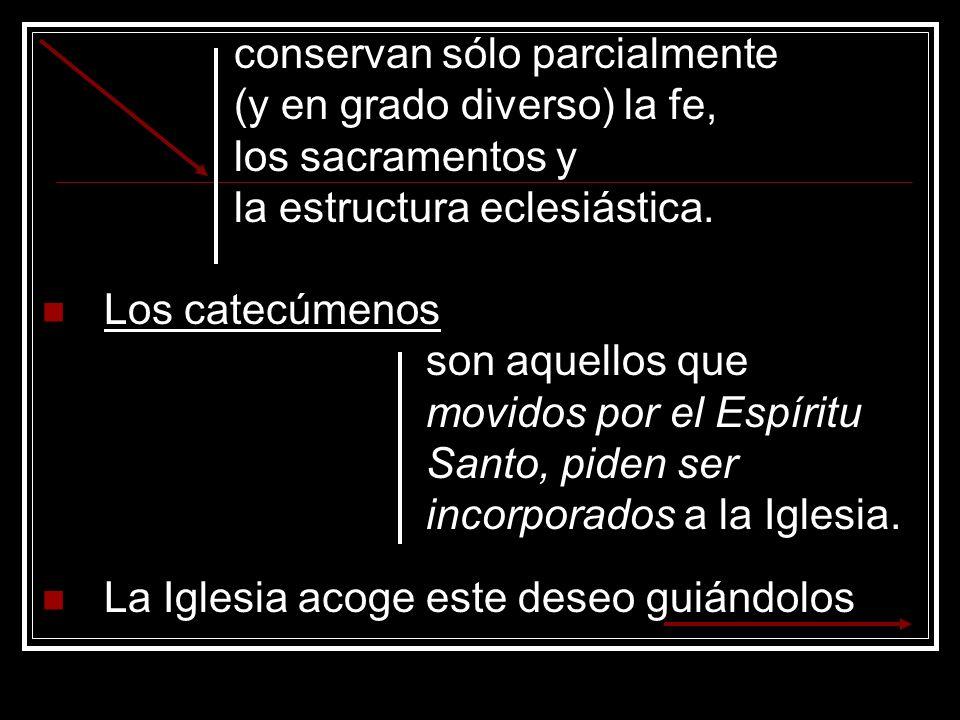 conservan sólo parcialmente (y en grado diverso) la fe, los sacramentos y la estructura eclesiástica. Los catecúmenos son aquellos que movidos por el