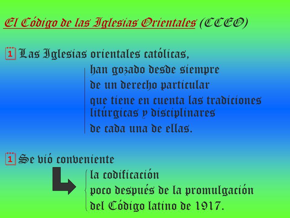 El Código de las Iglesias Orientales (CCEO) Las Iglesias orientales católicas, han gozado desde siempre de un derecho particular que tiene en cuenta l